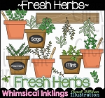 Fresh Herbs Clipart Collection